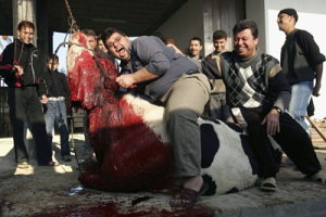 Halal meats are being sold more and more in America. Not until I did my research did I find what a barbaric act this is in islam and how sharia law requires it. See more by Arch Kennedy